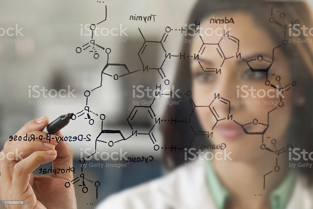 Scientist in Lab working on DNA Structure stock photo