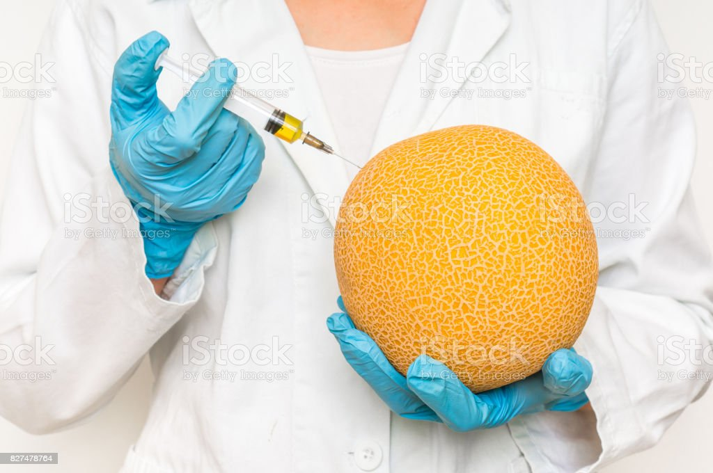 GMO scientist injecting liquid from syringe into yellow melon stock photo