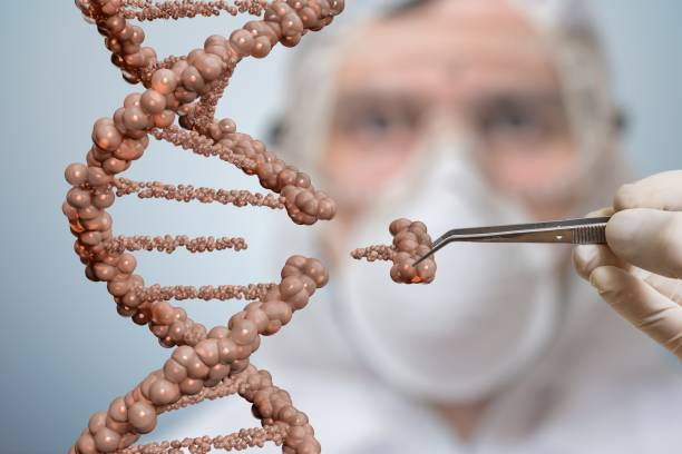 scientist is replacing part of a dna molecule. genetic engineering and gene manipulation concept. - genetic modification stock photos and pictures