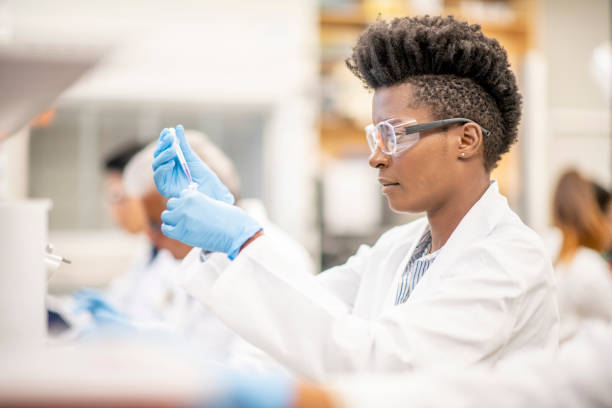 Scientist look for a cure stock photo