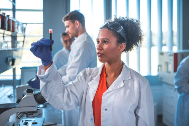 Scientist looking at blood sample in laboratory stock photo
