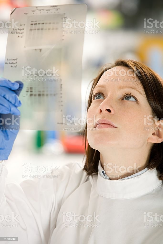 Scientist looking at DNA stock photo
