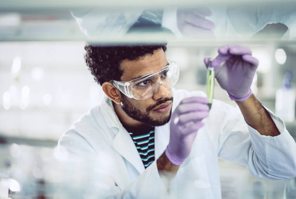 scientist looking at test tube - science lab stock photos and pictures