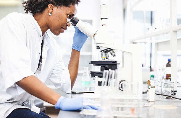 scientist looking into the microscope - microbiology stock pictures, royalty-free photos & images