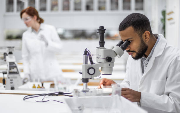Scientist looking through the microscope Scientist looking through the microscope microbiologist stock pictures, royalty-free photos & images