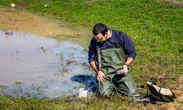 scientist measuring environmental water quality in a wetland - organizm wodny zdjęcia i obrazy z banku zdjęć