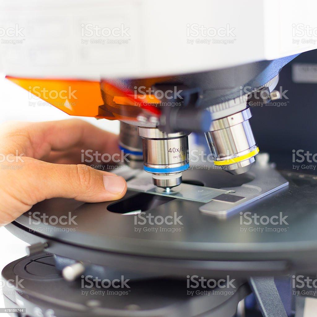 Wissenschaftler microscoping auf Fluoreszierende Mikroskop. Lizenzfreies stock-foto
