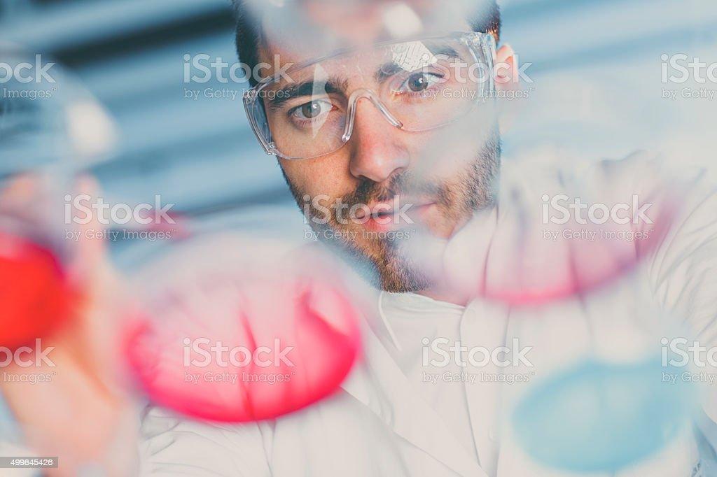 Wissenschaftler pipetting Probieren Sie in einer Petrischale in einem Labor – Foto