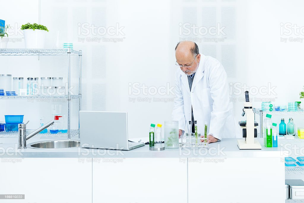 Scientist reviewing notes royalty-free stock photo
