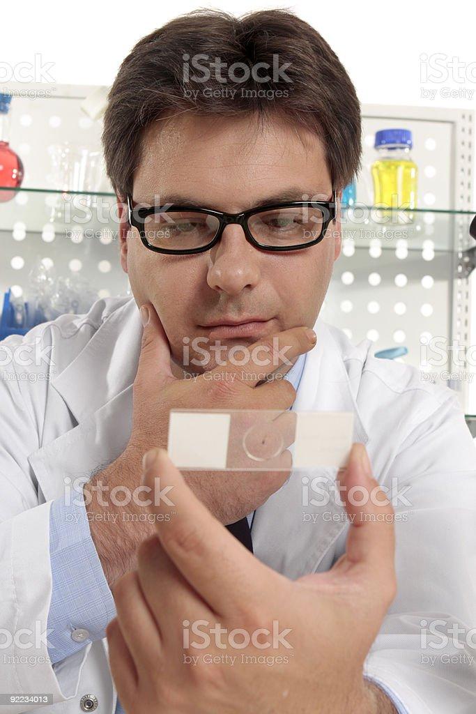 Scientist studies a microscope slide royalty-free stock photo