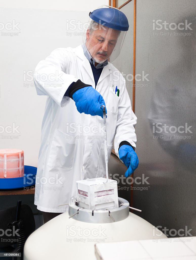 Scientist taking samples from a cryogenic nitrogen container stock photo
