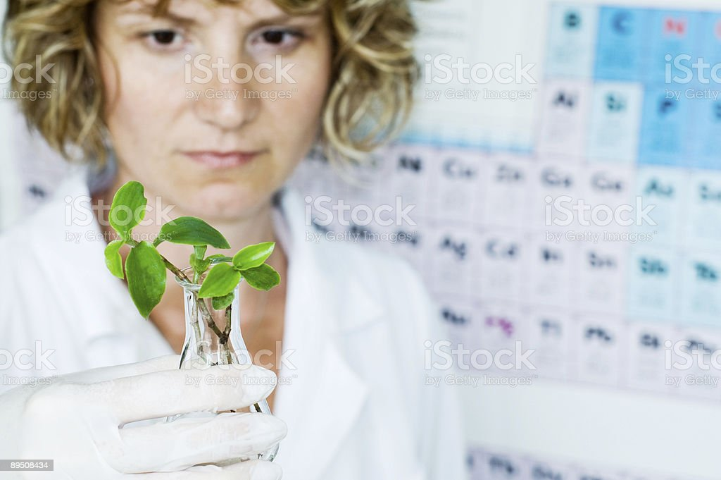 scientist watchins agriculture sample royalty-free stock photo