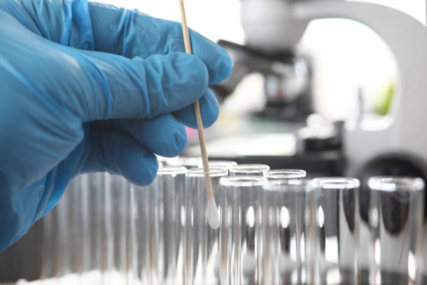 Scientist wearing protective gloves examining dna samples stock photo