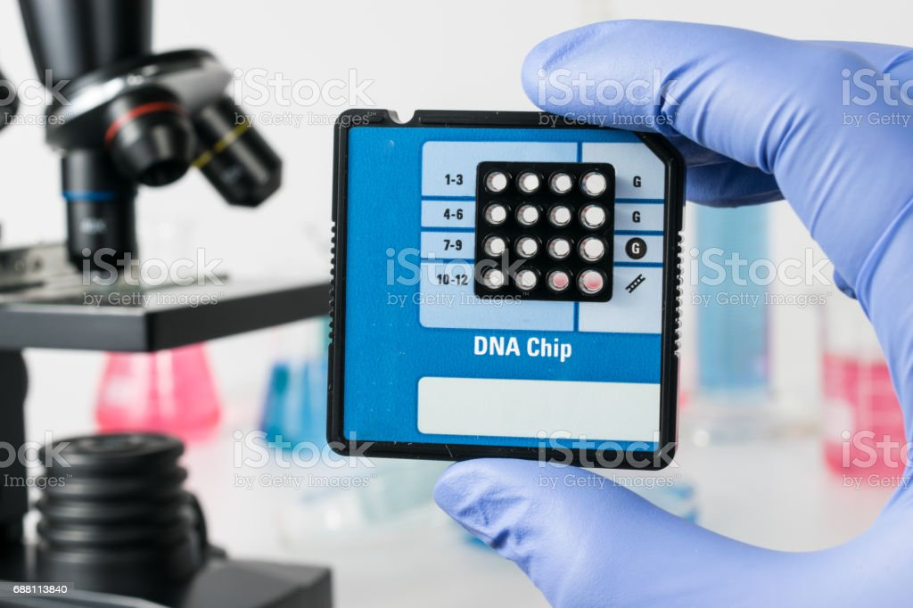 Scientist with DNA Sequencing Chip. Medical laboratory. stock photo