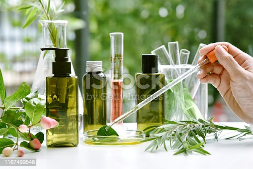 istock Scientist with natural drug research, Natural organic botany and scientific glassware, Alternative green herb medicine, Natural skin care beauty products, Research and development concept. 1167499546