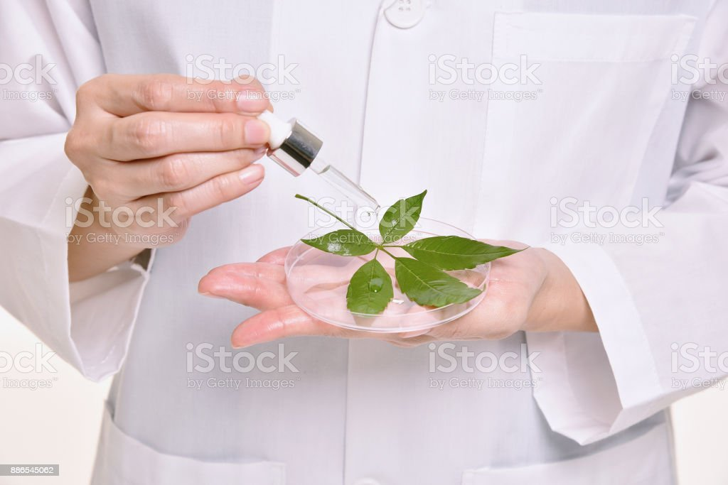 Scientist with natural oil skin care, Green herbal organic beauty product discovery at science lab. (Selective Focus) - Royalty-free Aromatherapy Stock Photo