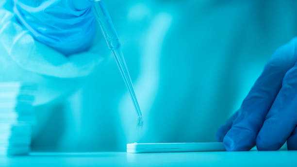 Scientist Working In The CDC Laboratory For Covid-19 stock photo