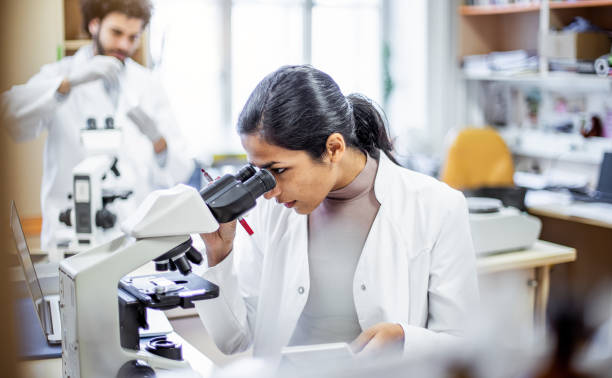 Scientist working in the laboratory, looking through a microscope Scientist working in the laboratory, looking through a microscope microbiologist stock pictures, royalty-free photos & images