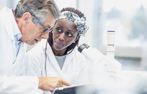 Scientist Working in The Laboratory, Using a Microscope Scientist Using a Microscope carcinoma stock pictures, royalty-free photos & images