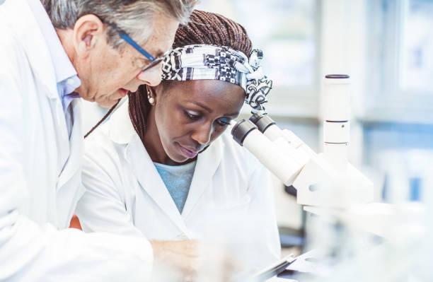 scientist working in the laboratory, using a microscope - ematologia foto e immagini stock