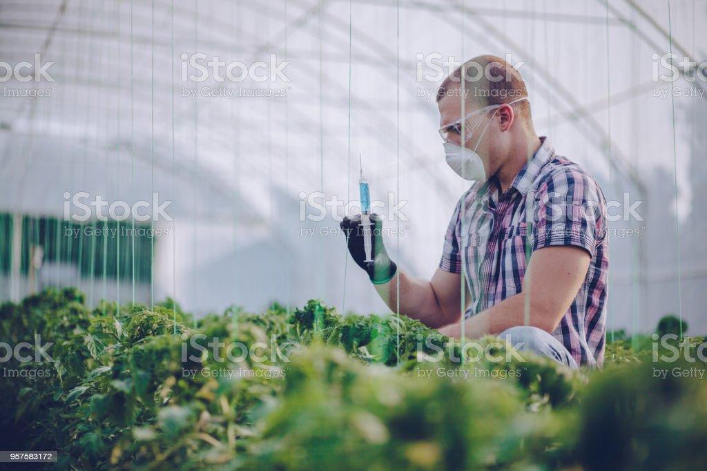 Cientista a trabalhar na fazenda - foto de acervo