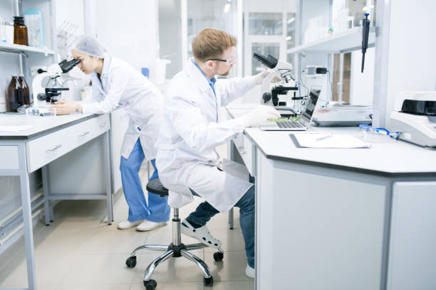 Scientist working with laptop and microscope Side view of male microbiologist in glasses sitting at desk using laptop and holding hand on microscope with food samples with assistant looking at microscope eyepiece on background . microbiologist stock pictures, royalty-free photos & images