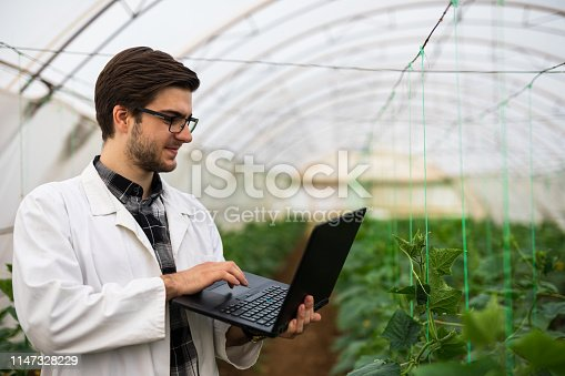 Scientist works on laptop while standing in greenhouse