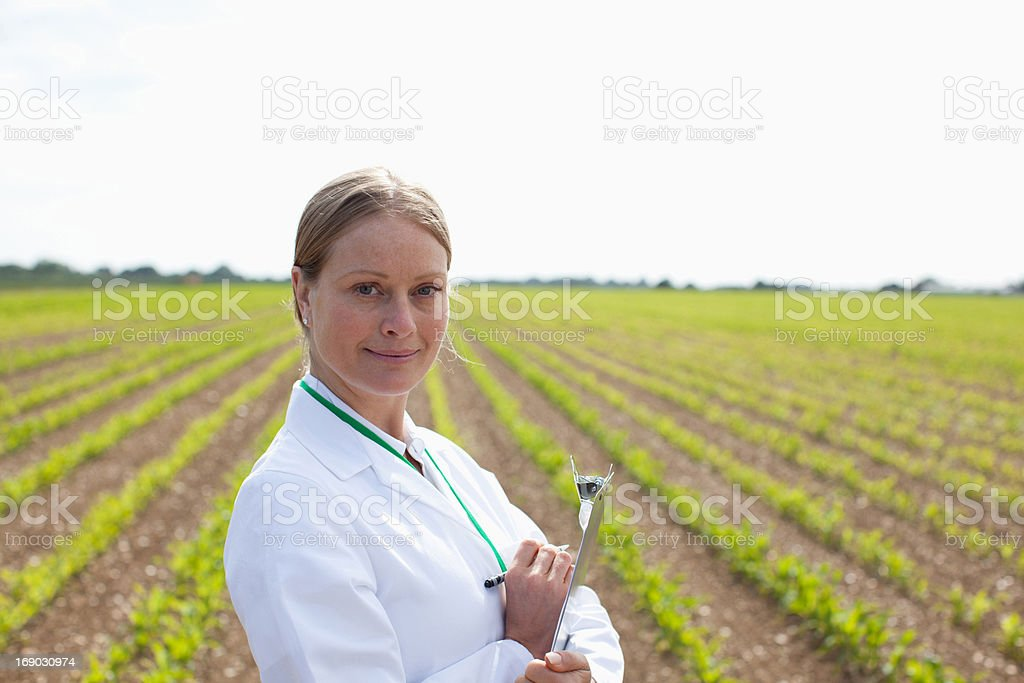 Scientist writing on clipboard in wheat field stock photo