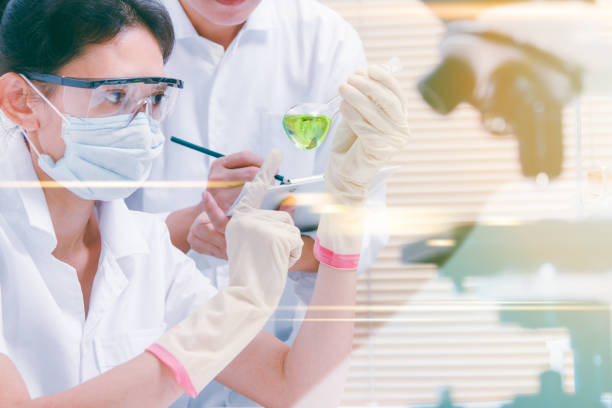 (SCIENCE) Scientists are certain activities on experimental science like mixing chemicals, microscope, entry data to develop science medicine or food for everyone on the world, Film effect. stock photo