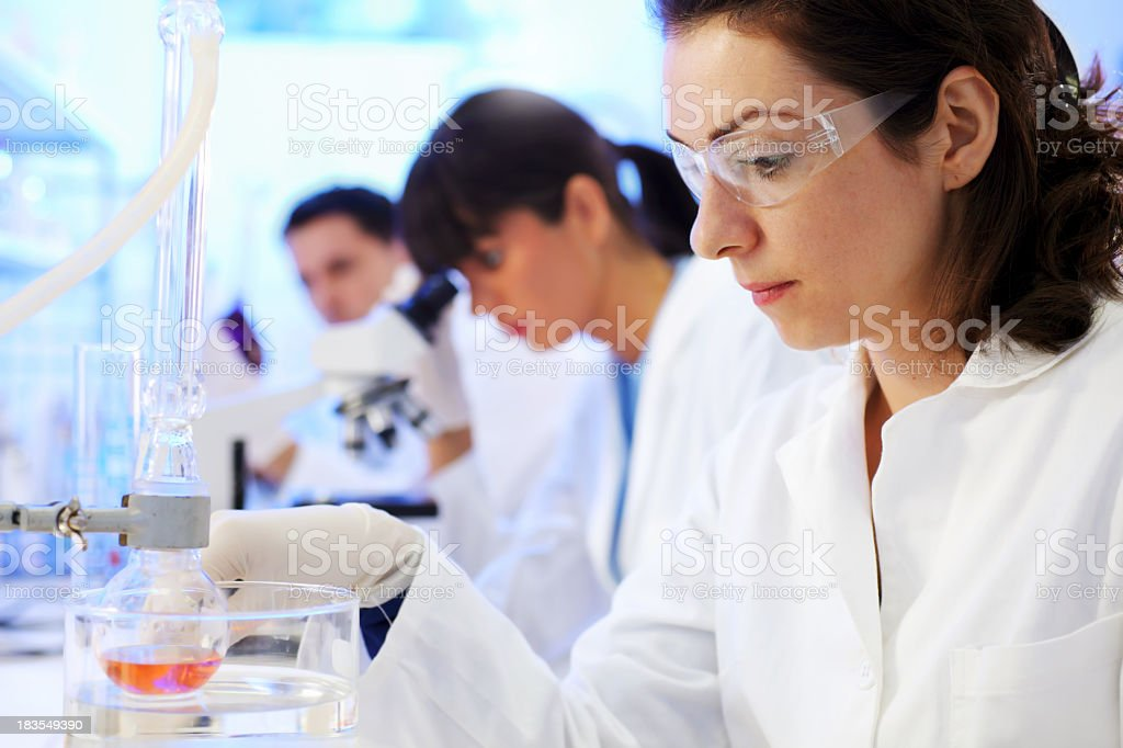 Scientists are working in a chemical lab. royalty-free stock photo