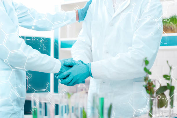 Scientists at laboratory stock photo
