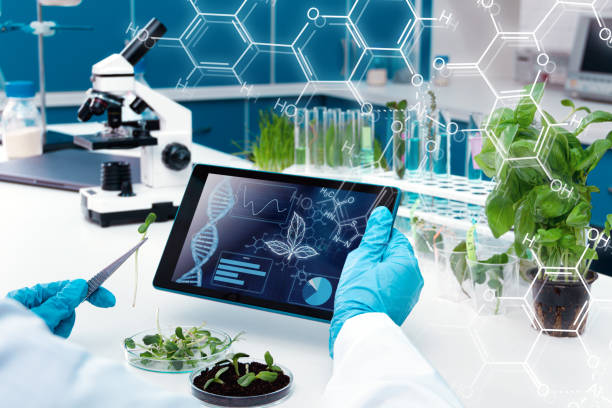Scientists at laboratory Closeup scientists hands are holding tablet. Biologist is working at microbiology laboratory. Woman is conducting experiments, tests with plants. Biotechnologist is researching leaves on computer. genetic modification stock pictures, royalty-free photos & images