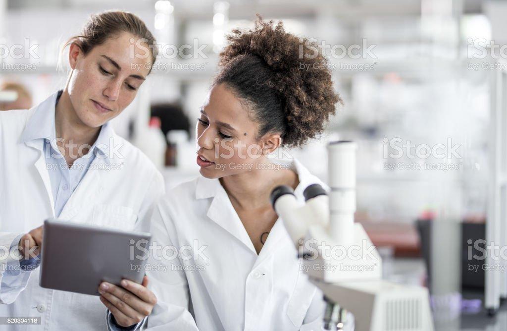 Wissenschaftler diskutieren und mit Digital-Tablette – Foto