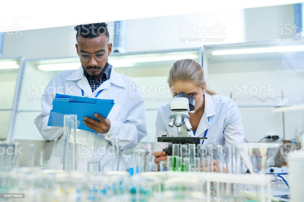 Cientistas fazendo pesquisa no laboratório - foto de acervo