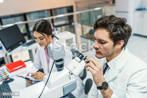 istock Scientists using microscopes in a lab 950077198