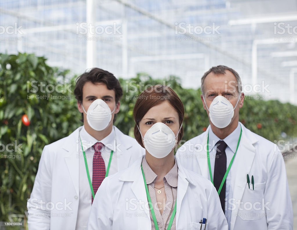 Scientists wearing masks in greenhouse royalty-free stock photo