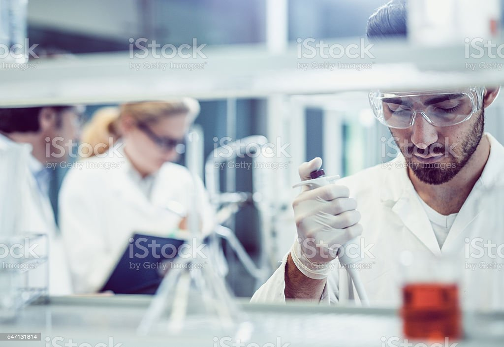 Scientists Working in the Laboratory – Foto