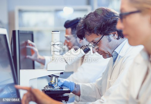 istock Scientists Working in the Laboratory 576919844
