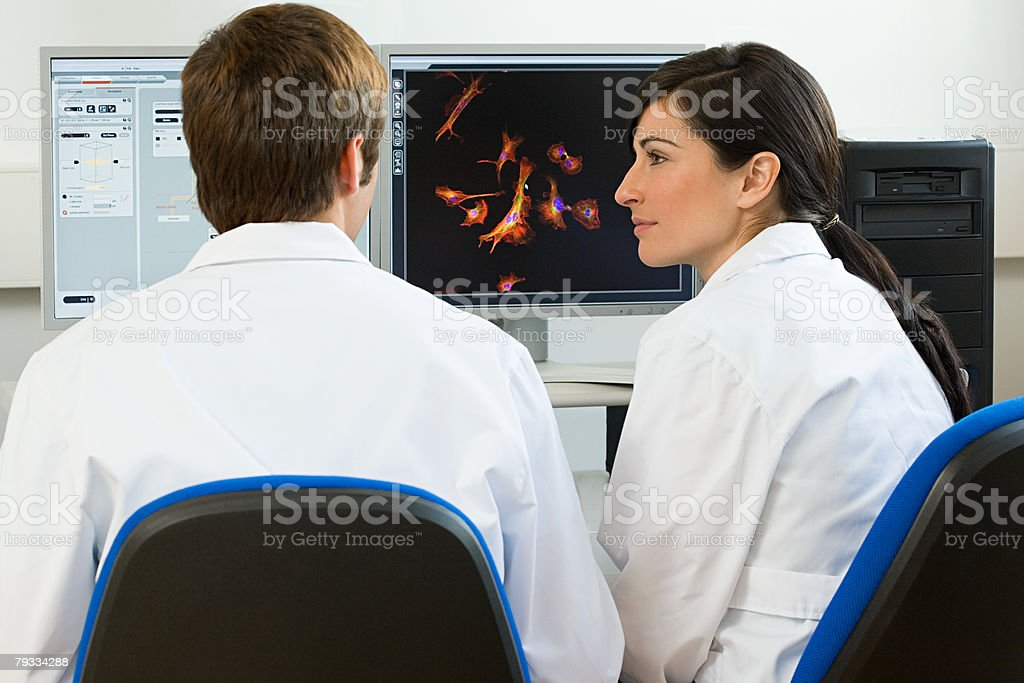 Scientists working on a computer stock photo