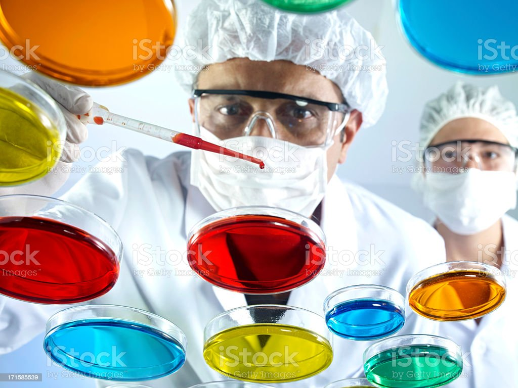 Scientists Working With Petri Dishes royalty-free stock photo