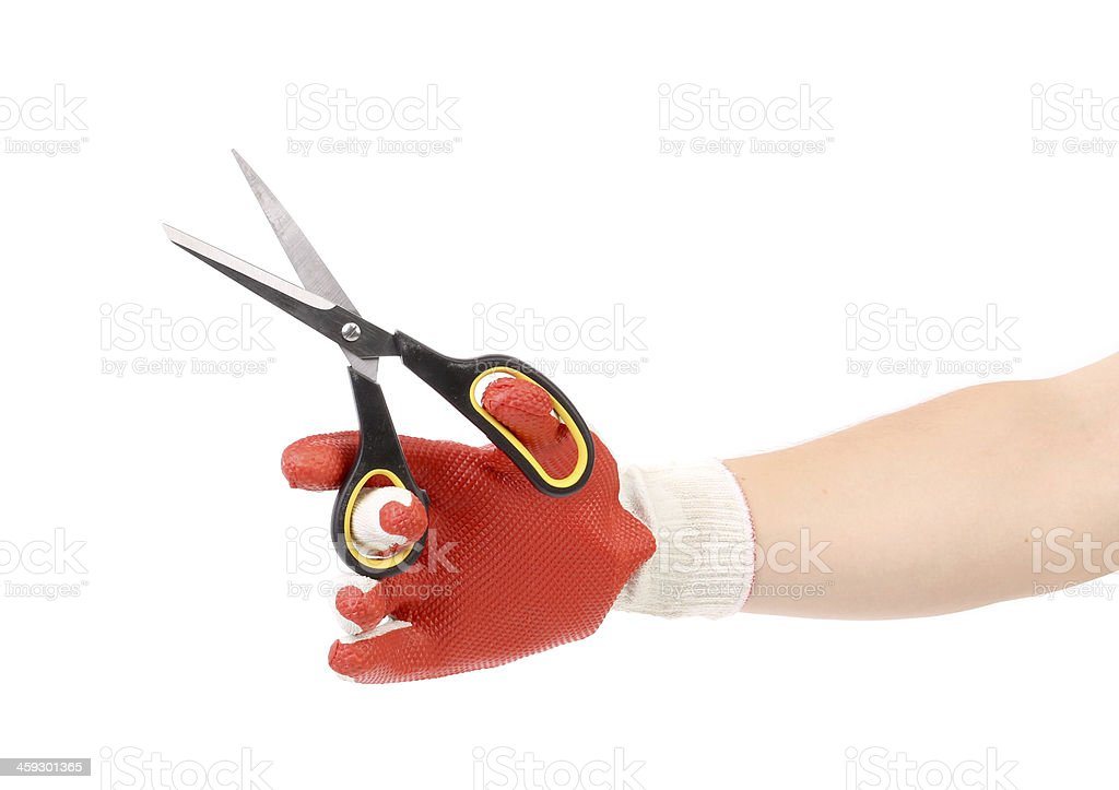 Scissors in hand with gloves. stock photo