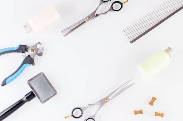 Schere mit Pinsel und Kamm für die Pflege, Shampoo und Hunde-Behandlungen, flach liegen – Foto