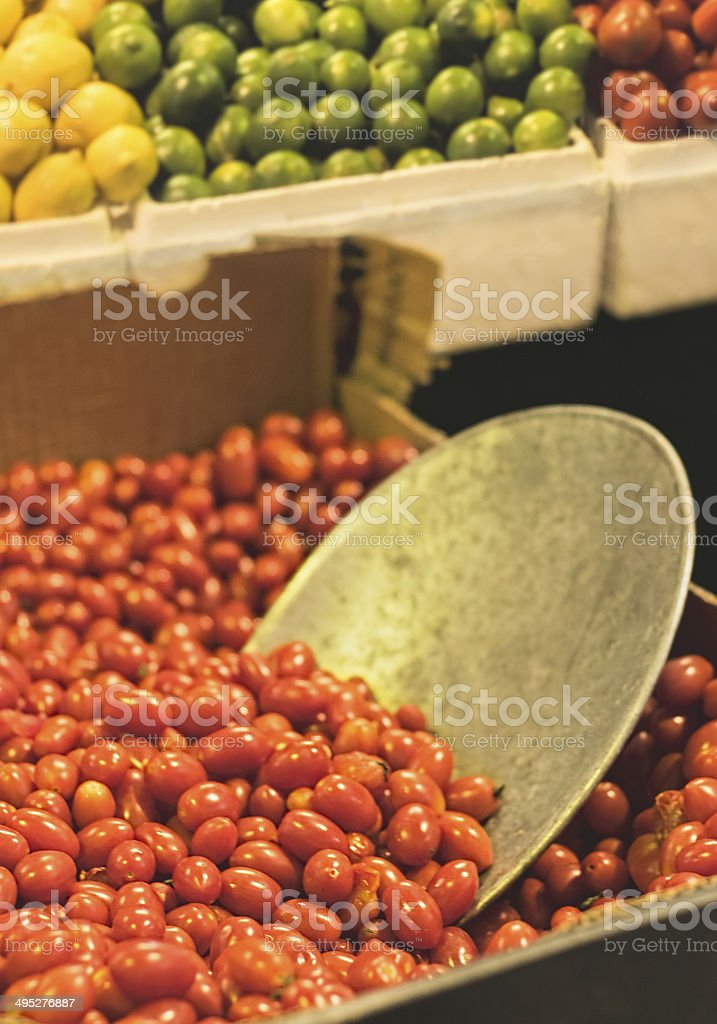 Scoop in tomatoes stock photo