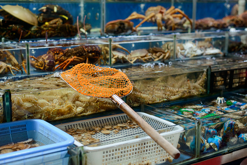 Scoop net resting on tanks borders. Shrimps, clams, crabs and other fresh seafood at a street market in China.
