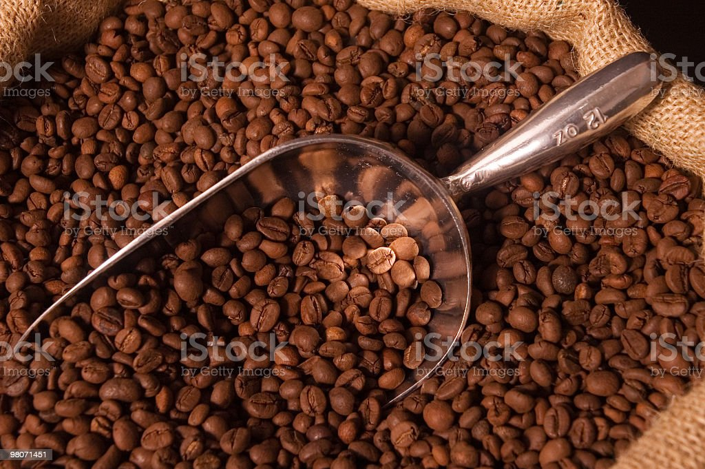 Scoop of coffee beans in an open burlap sack stock photo