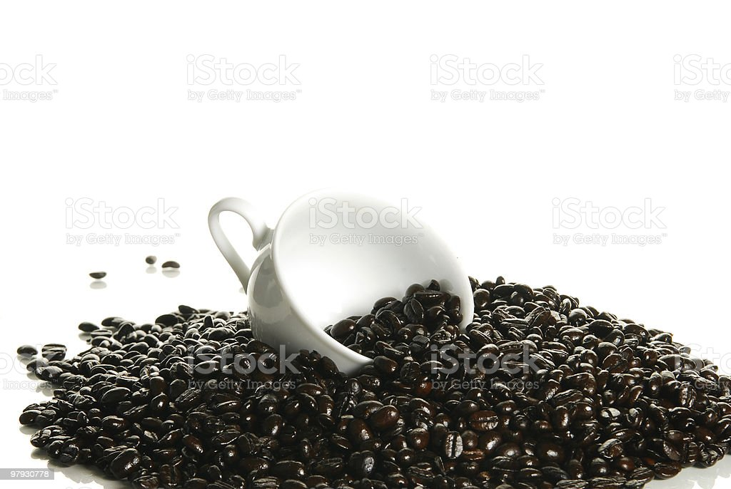 Scoop of fresh coffee beans royalty-free stock photo