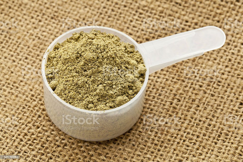scoop of hemp protein powder stock photo