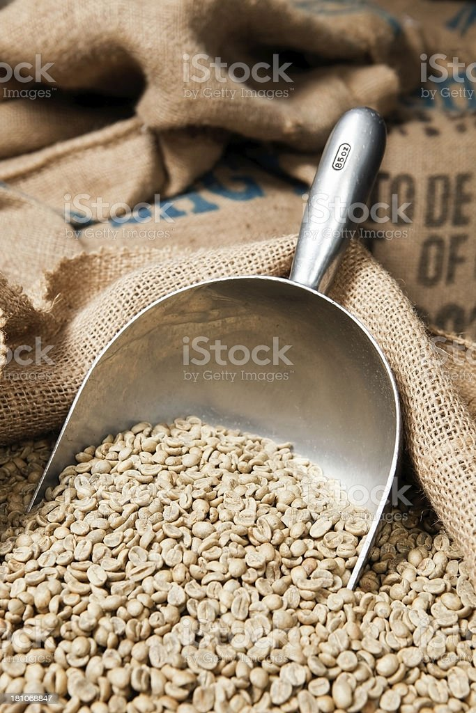Scoop with Green Coffee Beans in Sack royalty-free stock photo