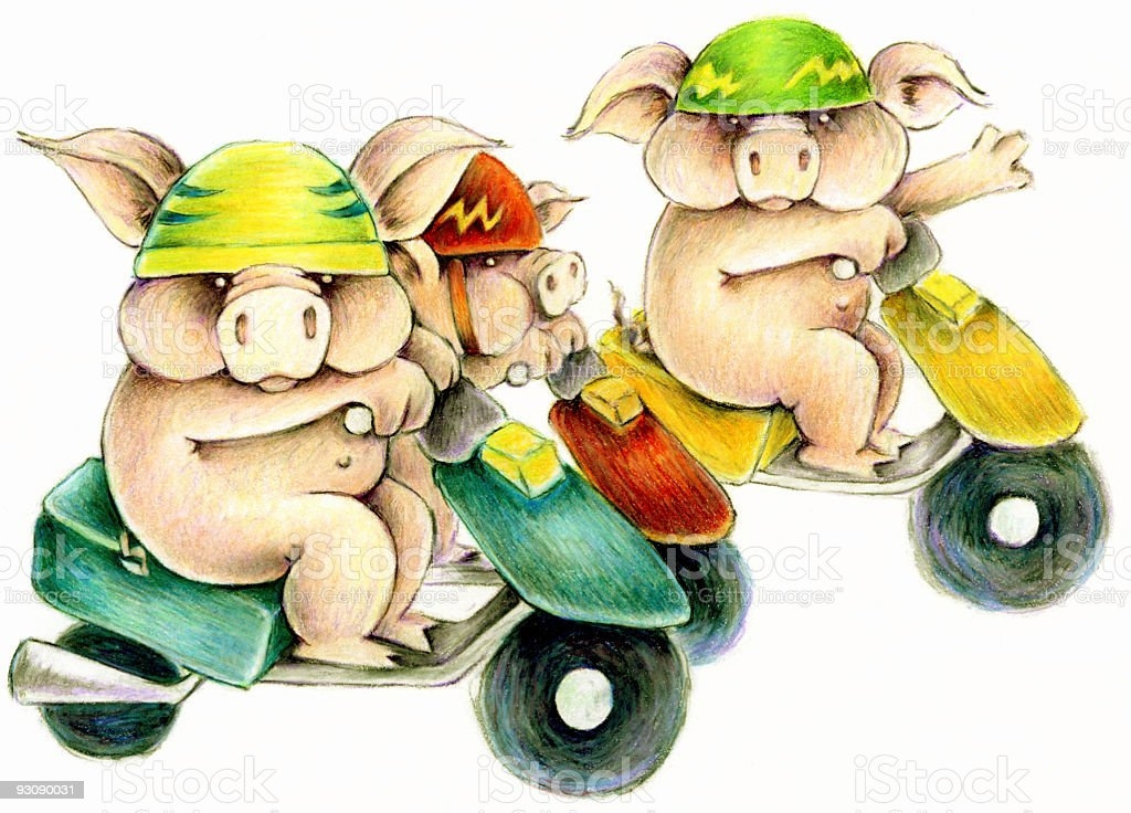 scooter pigs royalty-free stock photo