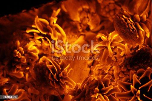 istock scorching burning pine-cones 91350339